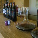 Cavino wine tasting 13568820_1824453167777520_511488020629217589_o